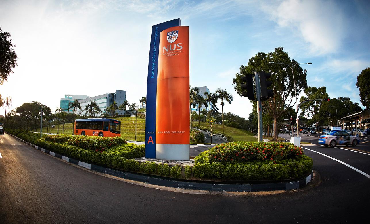 Commonwealth Scholarship at National University of Singapore
